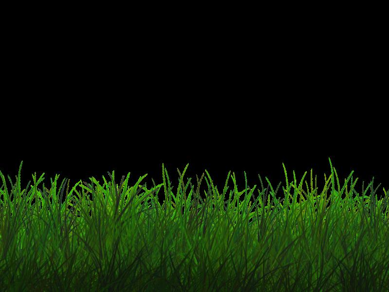Clipart grass grassland. Free transparent texture seamless