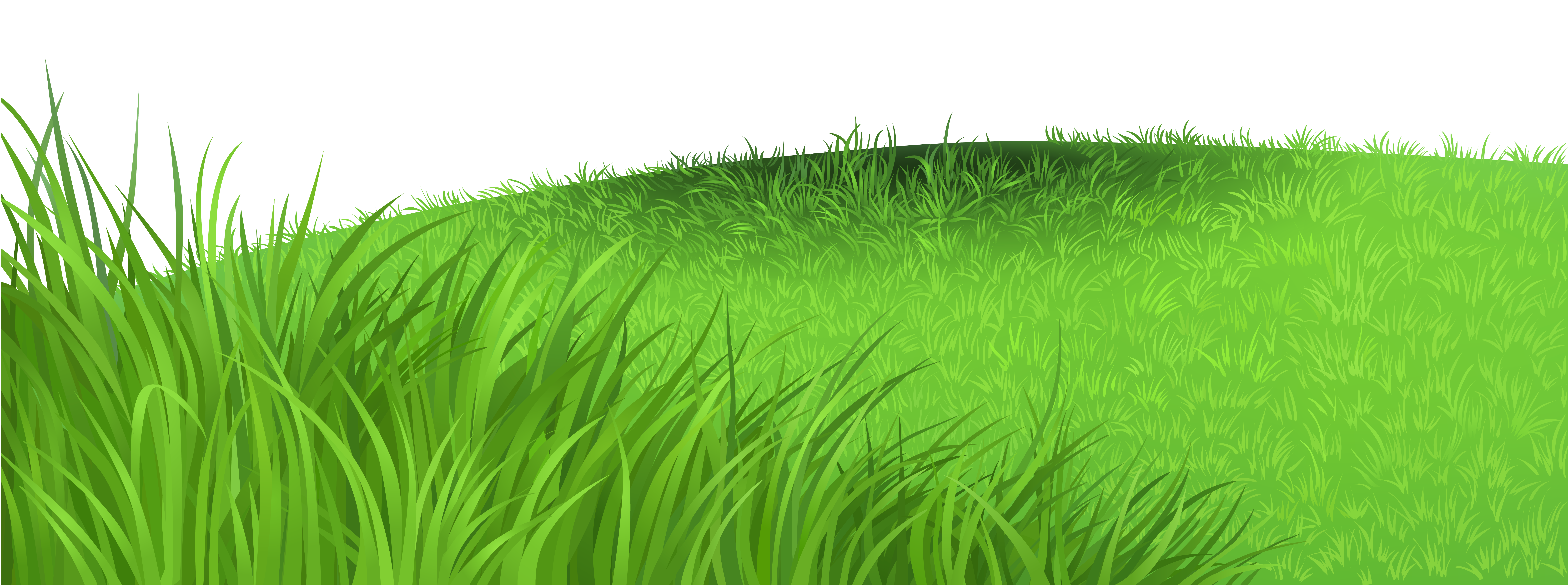 Clipart grass grassy area. Deco png picture gallery