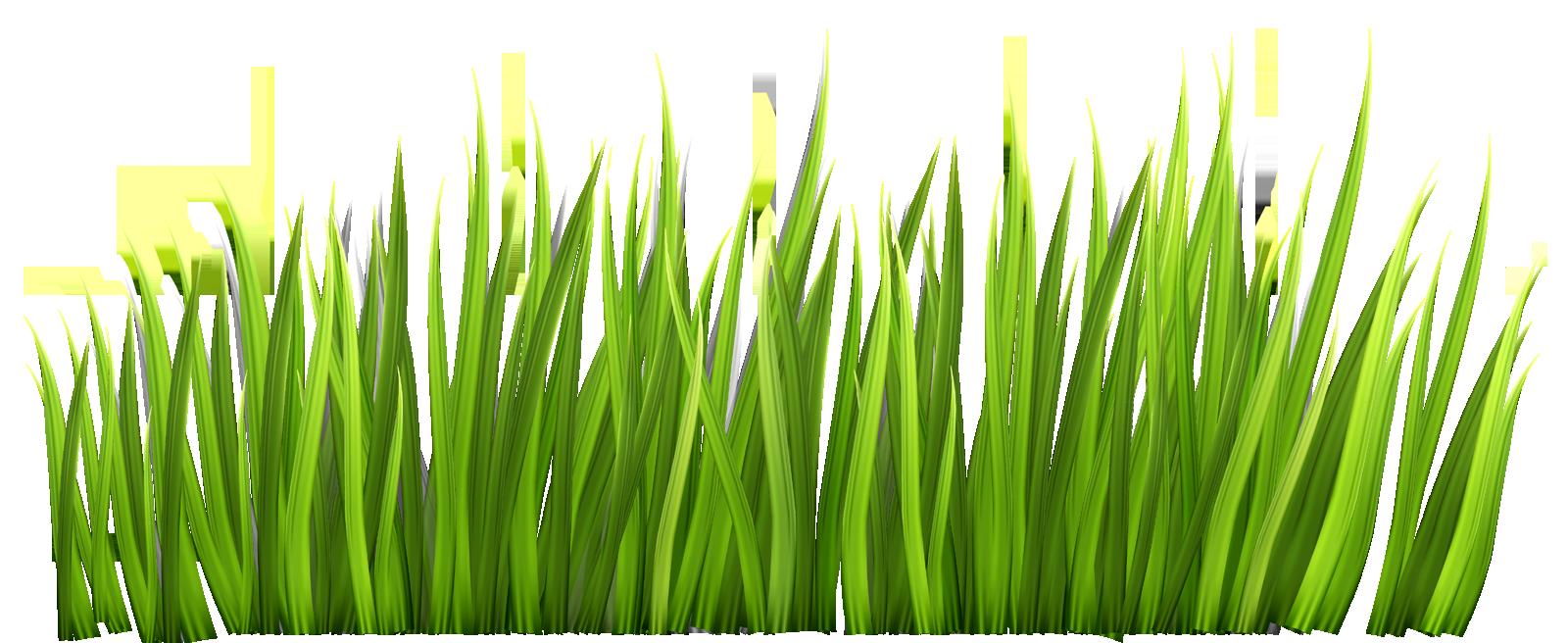 Clip art alternative design. Clipart grass grassy area