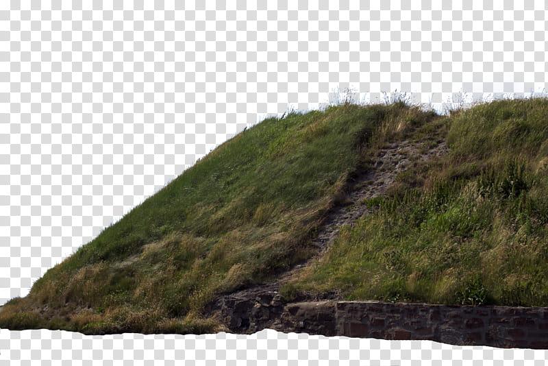 Clipart grass grassy area. Hill green field transparent