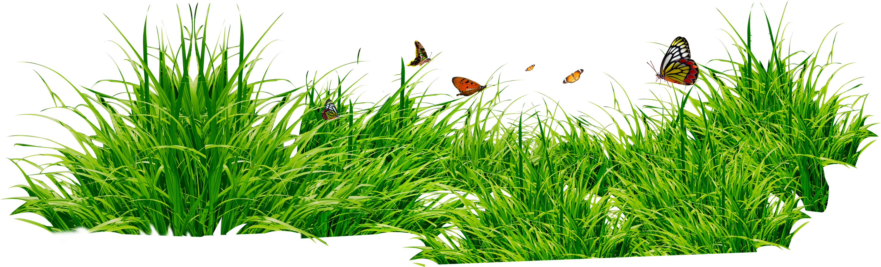 Clipart park grass. Green twenty four isolated