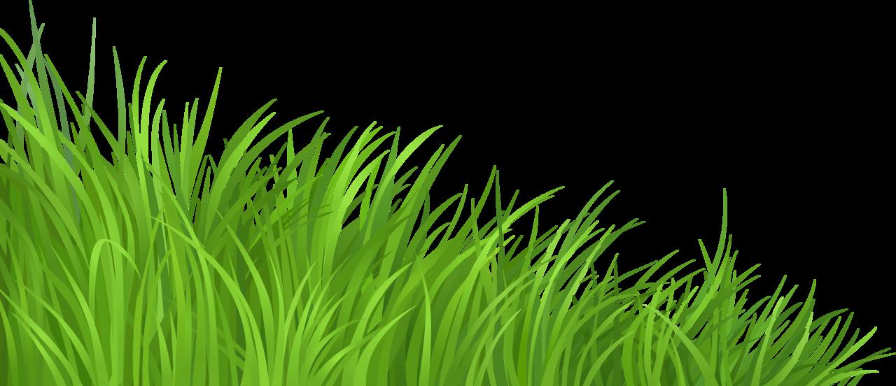Lawn clip art transprent. Clipart grass green grass