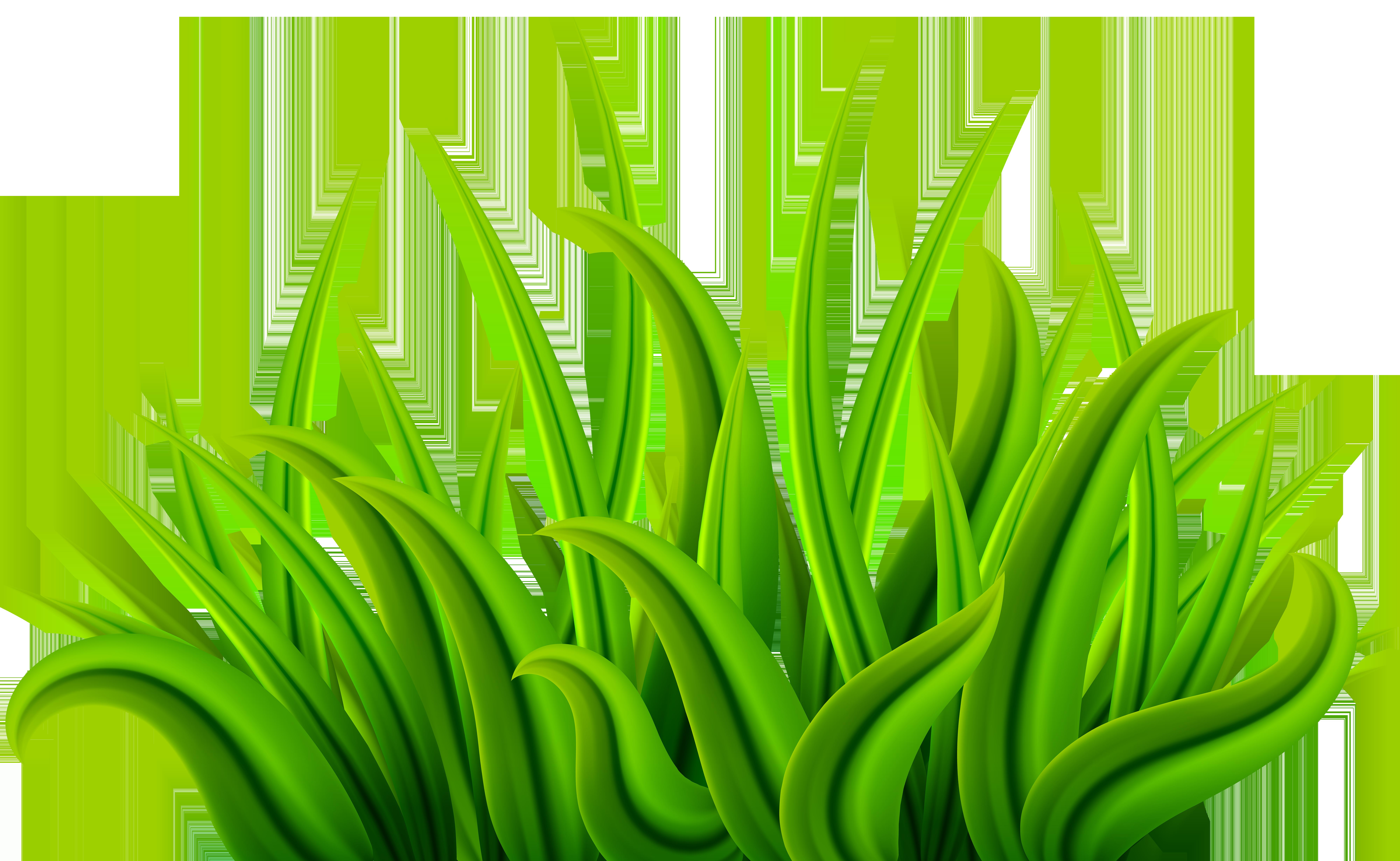 Clipart grass green grass. Png clip art image