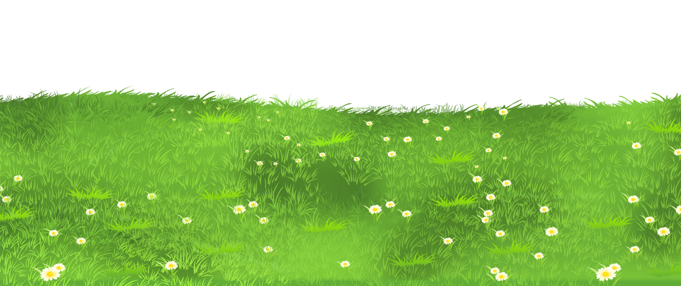 Grass ground with daisies. Farming clipart field