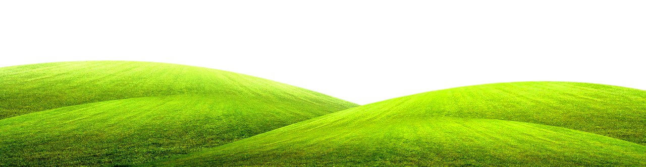 Green picture gallery yopriceville. Clipart grass ground