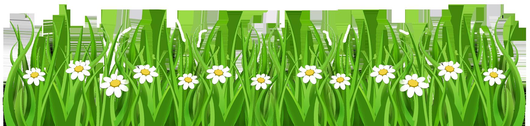 daisy clipart grass