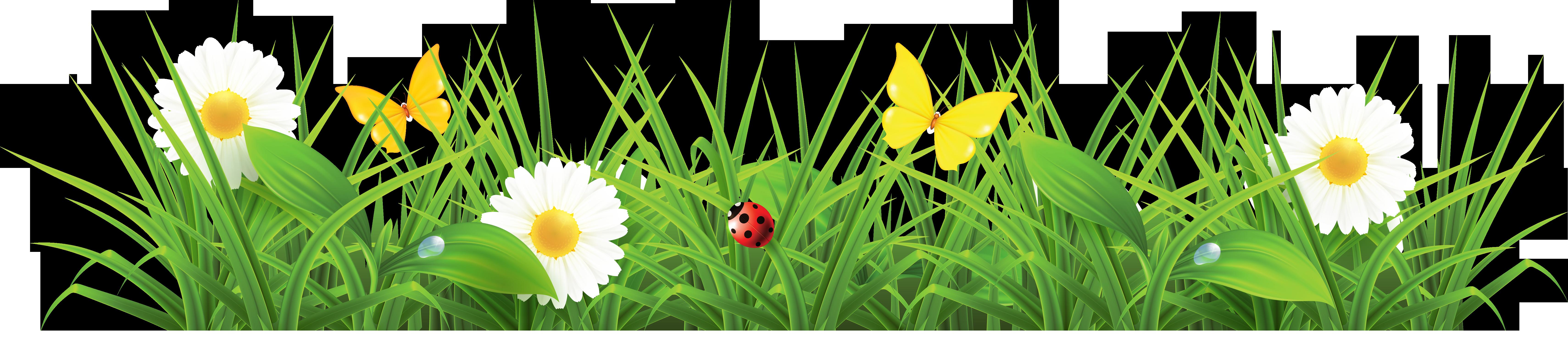Clip art vector panda. Flower clipart grass