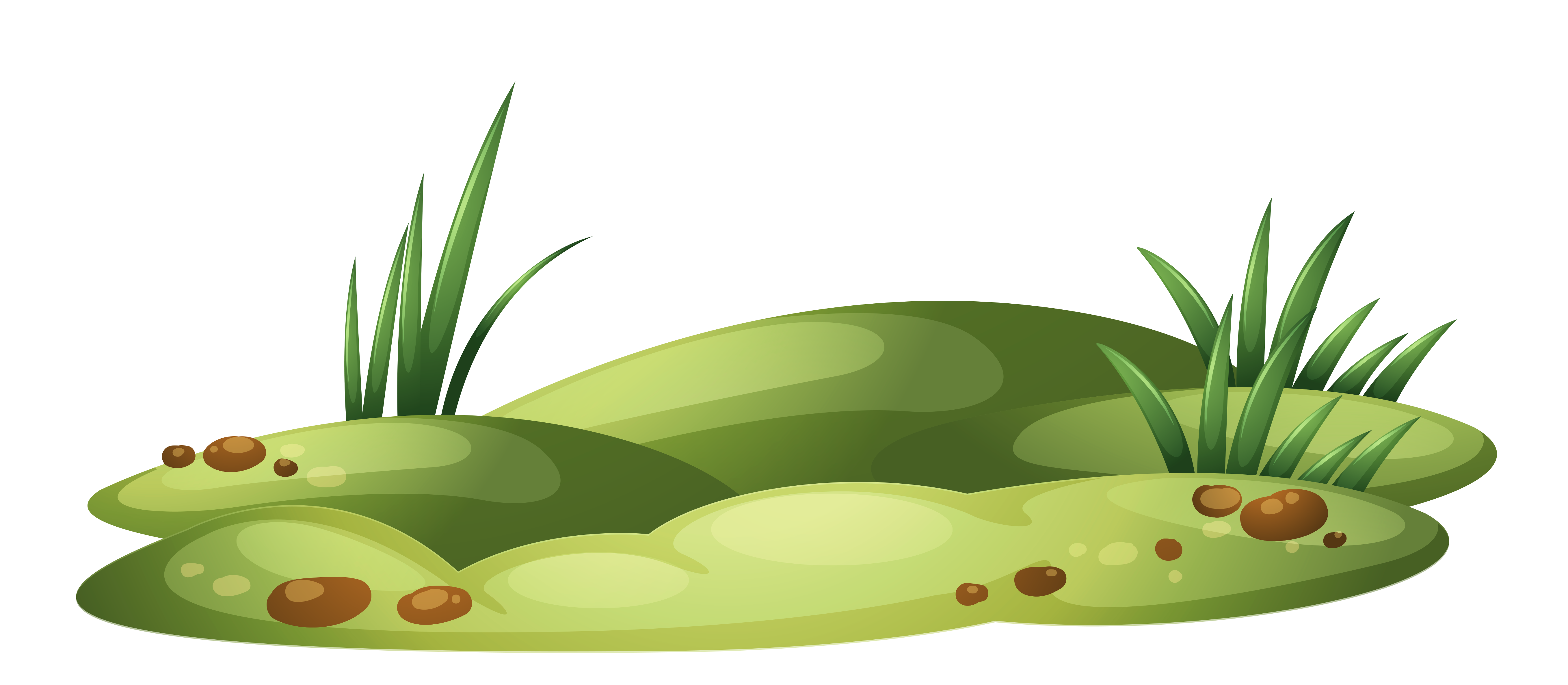 Patch with transparent png. Clipart grass illustration