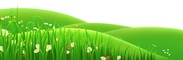 Pin by kamel on. Clipart grass landscape