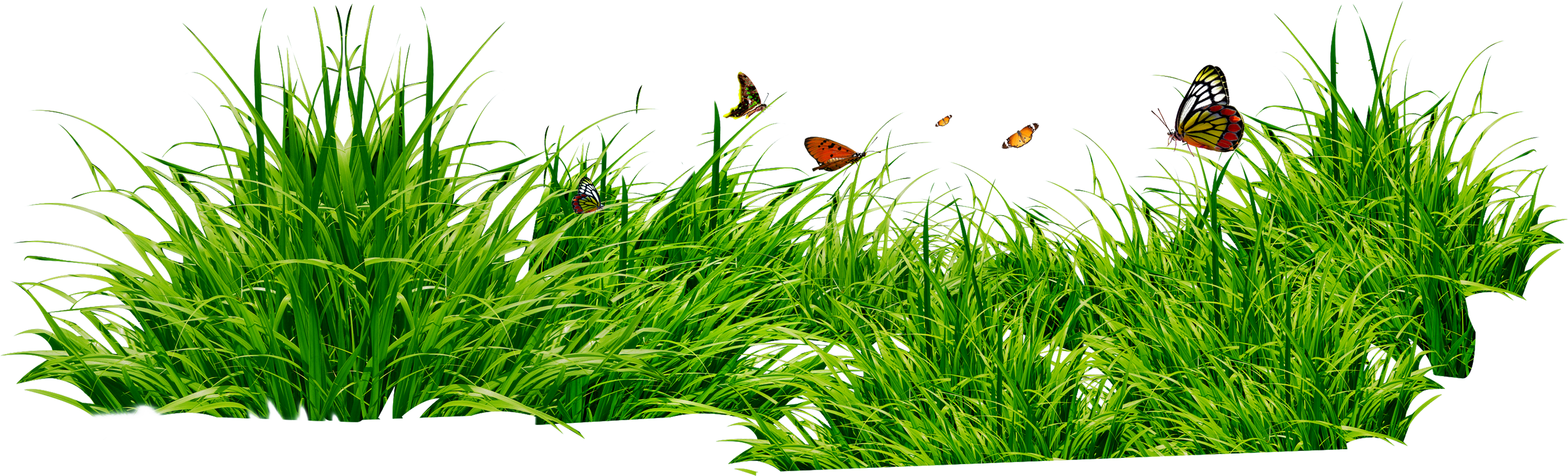 Hills clipart grass area. Png images pictures image