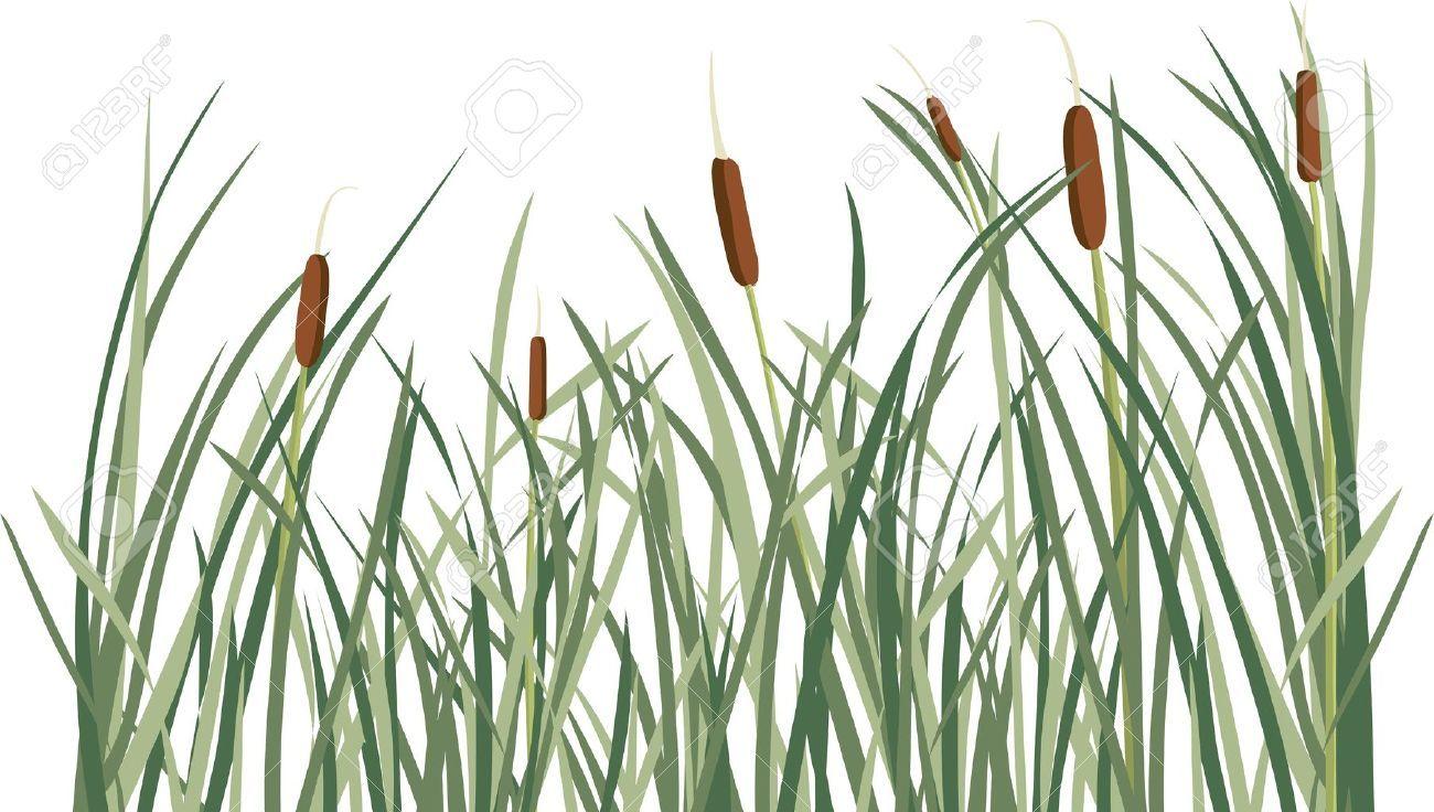 Background cartoon yahoo image. Clipart grass marsh