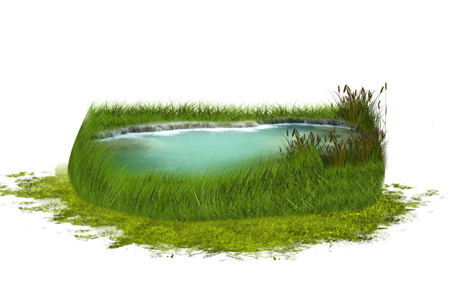 Clipart grass marsh. Png pond by moonglowlilly