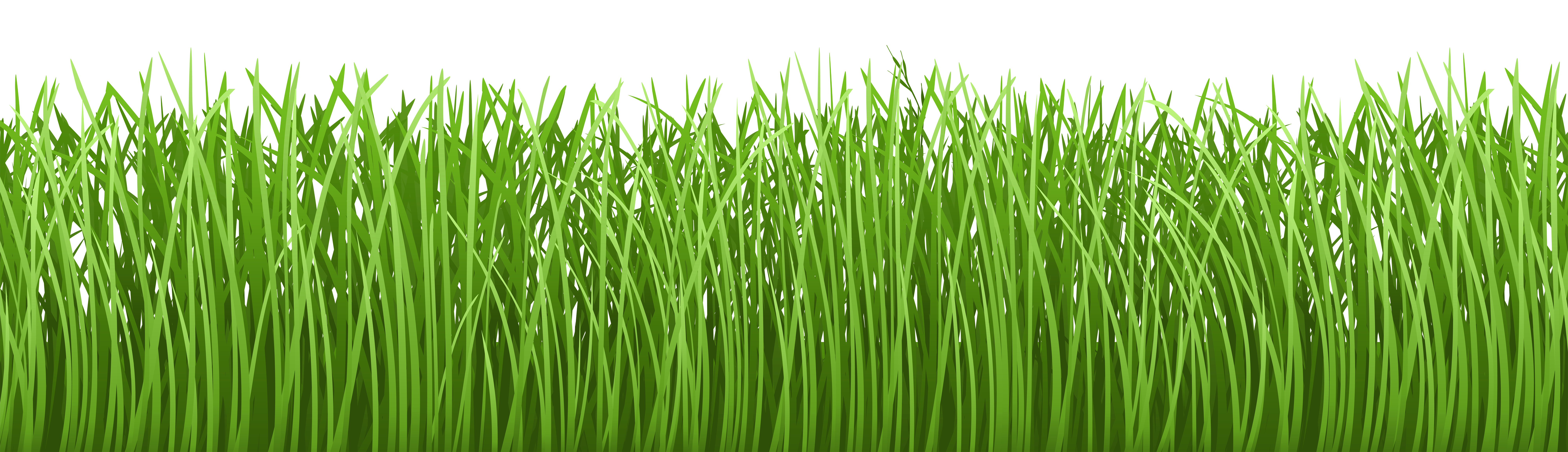 Clipart grass marsh. Ground long pencil and
