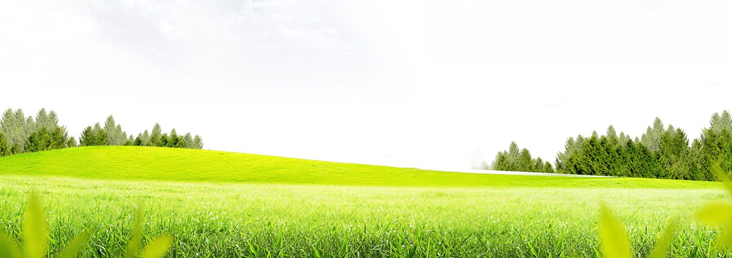 Download lawn free transparent. Clipart grass meadow