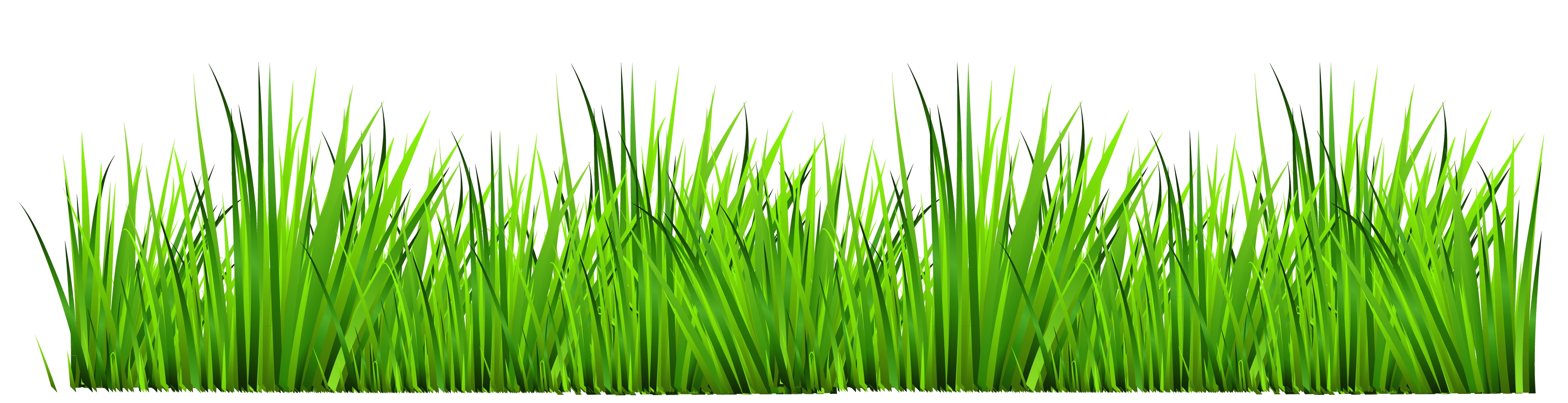 Clipart grass outline.  collection of free