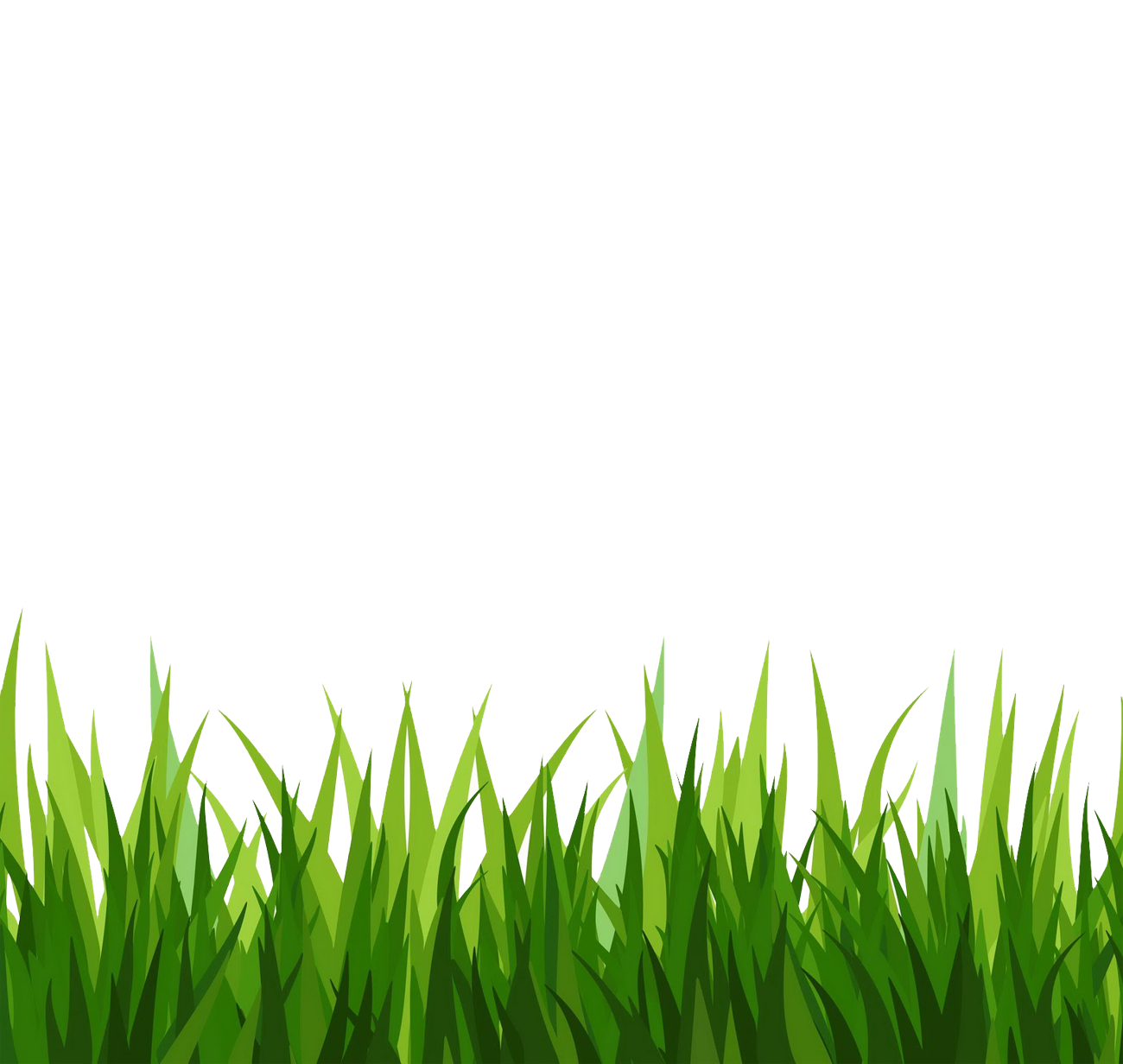 Grass outline