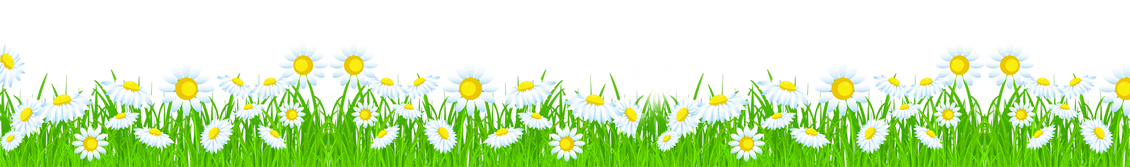 Daisy grass frames illustrations. Daisies clipart flower day
