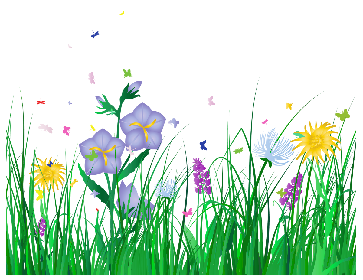 Free butterfly cliparts background. Clipart grass outline