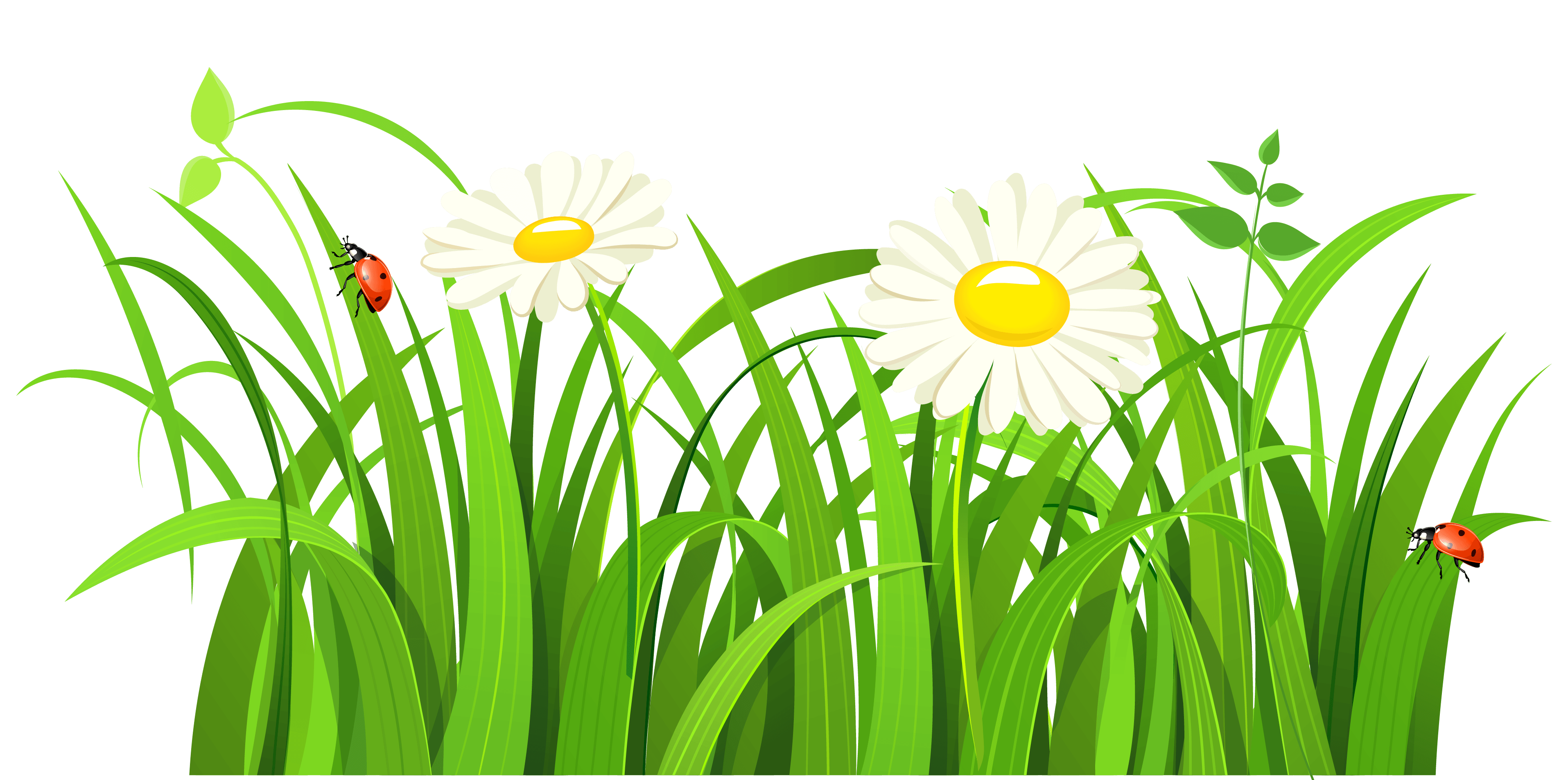 Clipart grass outline. Bug border cliparts zone