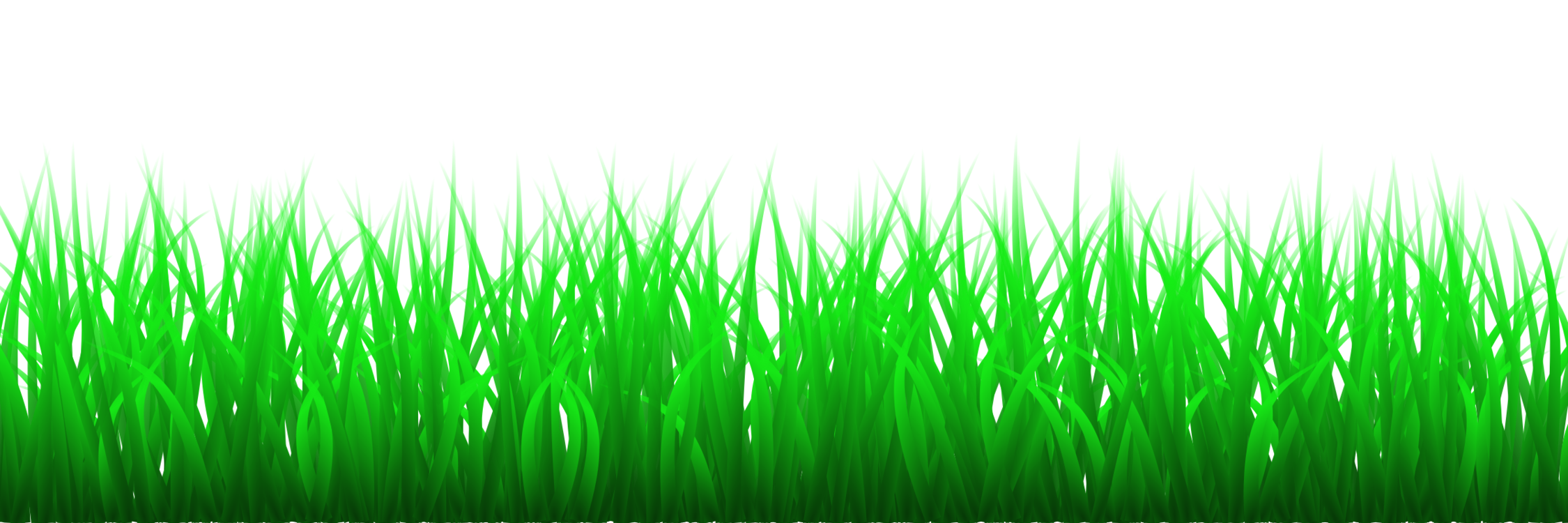 Clipart grass pdf. Plant meadow family png