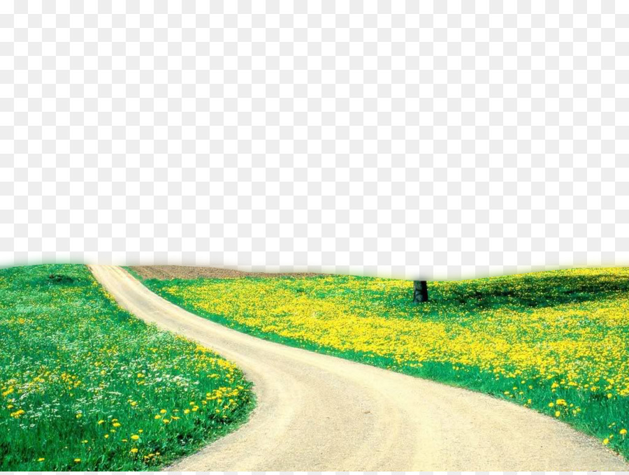 Clipart grass road. Green background nature