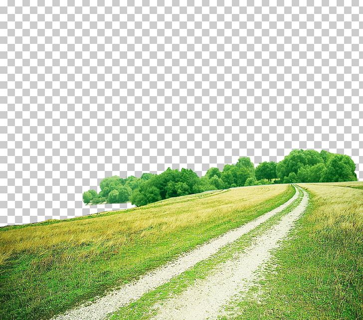 Green png background blue. Clipart grass road
