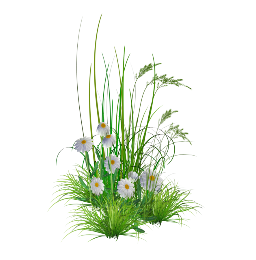 Png garden flowers by. Gardener clipart flower bed
