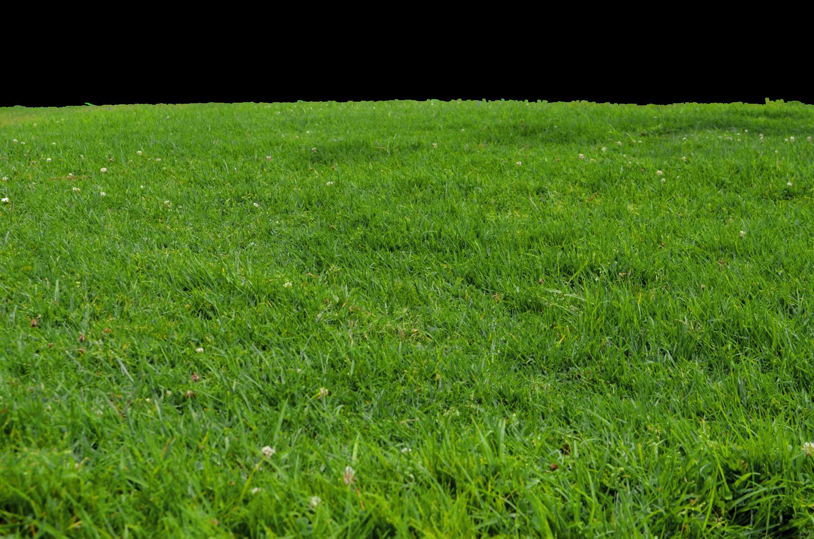 Hills clipart carpet grass. Png transparent images all