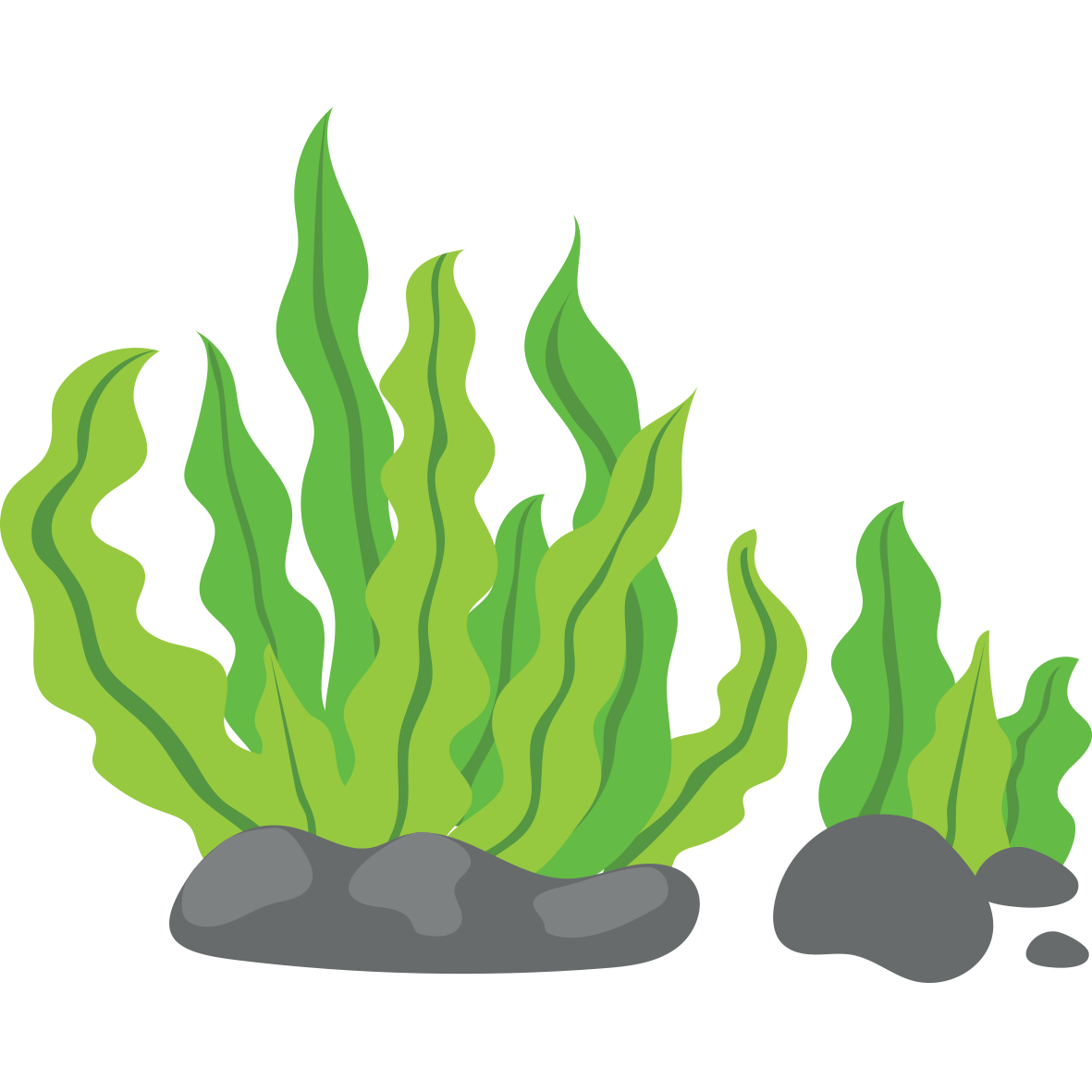 Clipart grass seaweed. Clip art green background