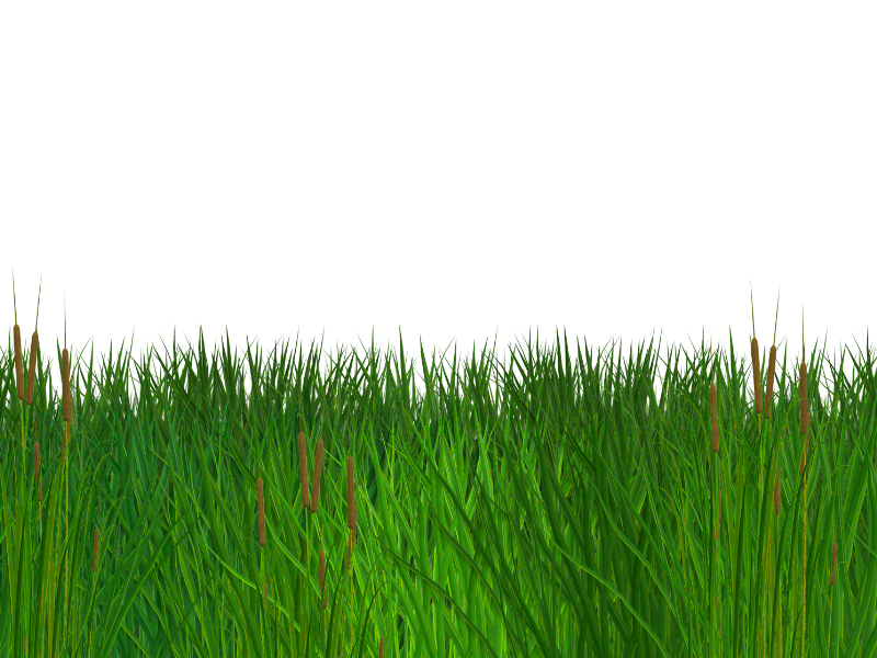 Seamless free clipart nature. Grass border png