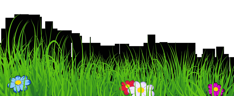 No background google search. Dandelion clipart rice grass