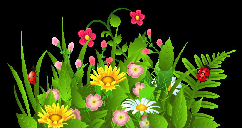Easy free on dumielauxepices. Clipart grass shrub