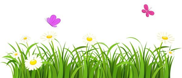 Clipart grass simple. Drawinds of and flowers