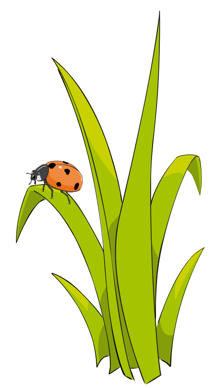 Grass and flowers clip. Ladybugs clipart symmetrical house