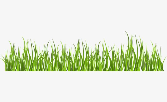 Clipart grass simple. Green and outdoor wedding