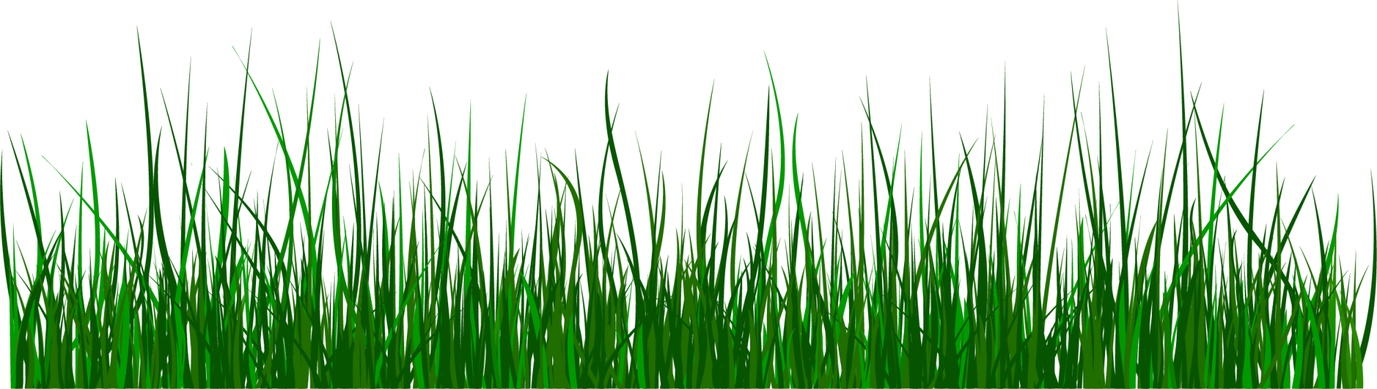 Clipart grass simple. Green clip art fresh