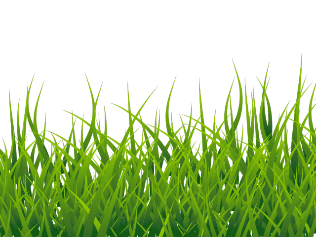 Free cliparts download clip. Clipart grass soccer