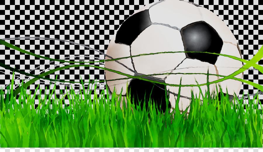 Family illustration football ball. Clipart grass soccer
