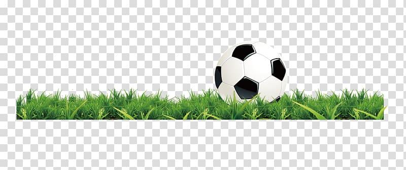 Lawn football green transparent. Clipart grass soccer
