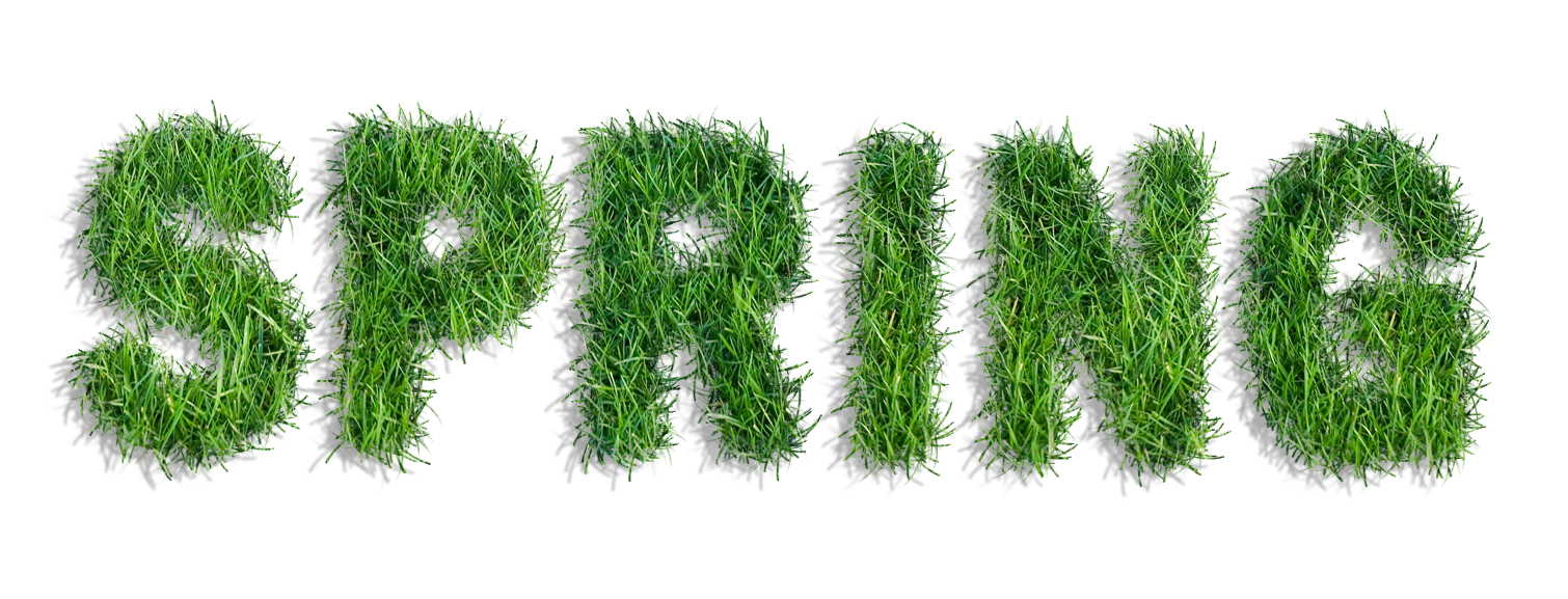 Clipart grass spring. Of png gallery yopriceville