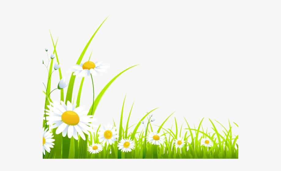 Clipart grass spring. Jasmine flower png
