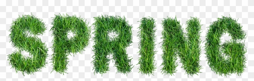 Clipart grass spring. With text png