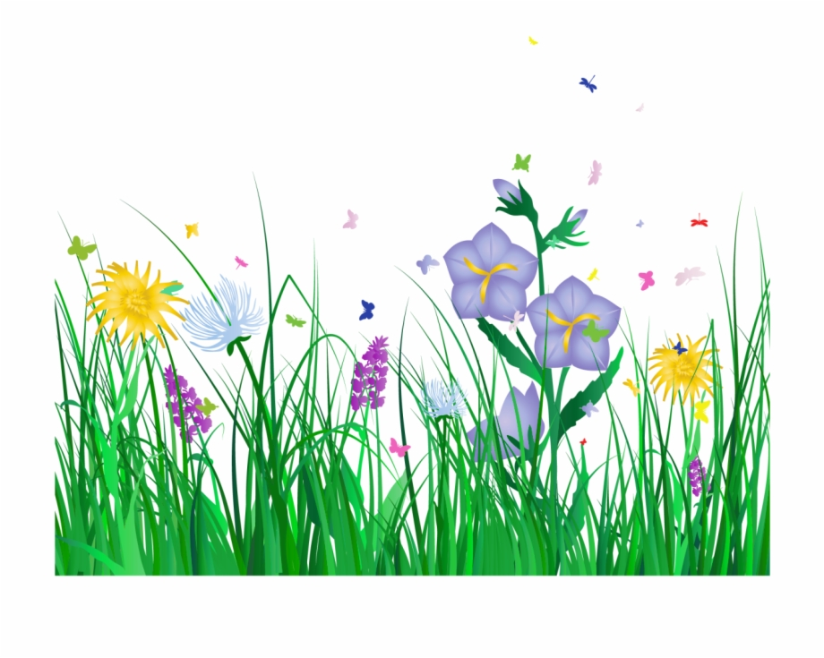 Border no background flowers. Clipart grass spring