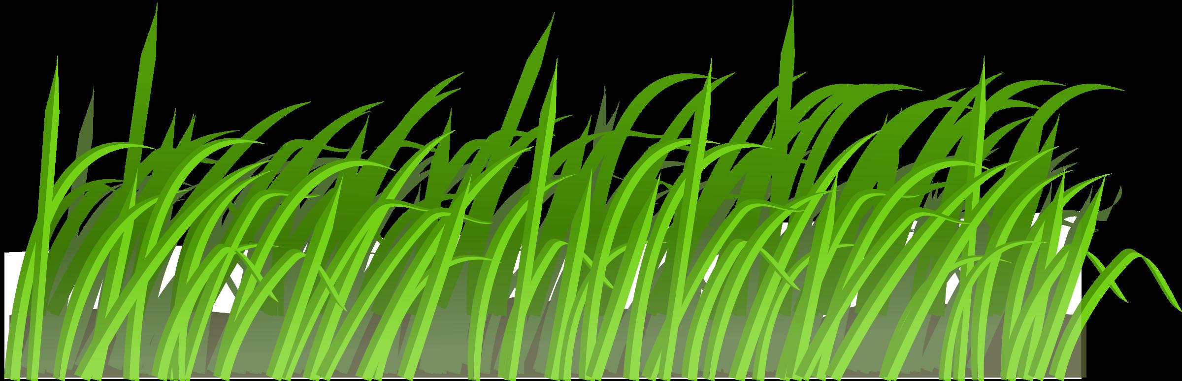 Clipart texture big image. Grass vector png
