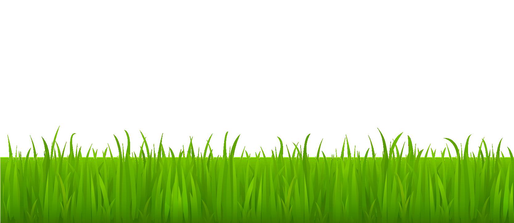Pin by aryaan khan. Clipart grass star