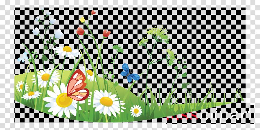 Clipart summer floral. Flower background grass