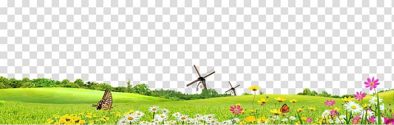 Clipart grass summer. Green safflower google s