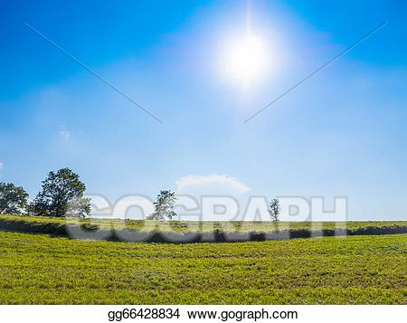 Clipart grass sun. Drawing green and blue