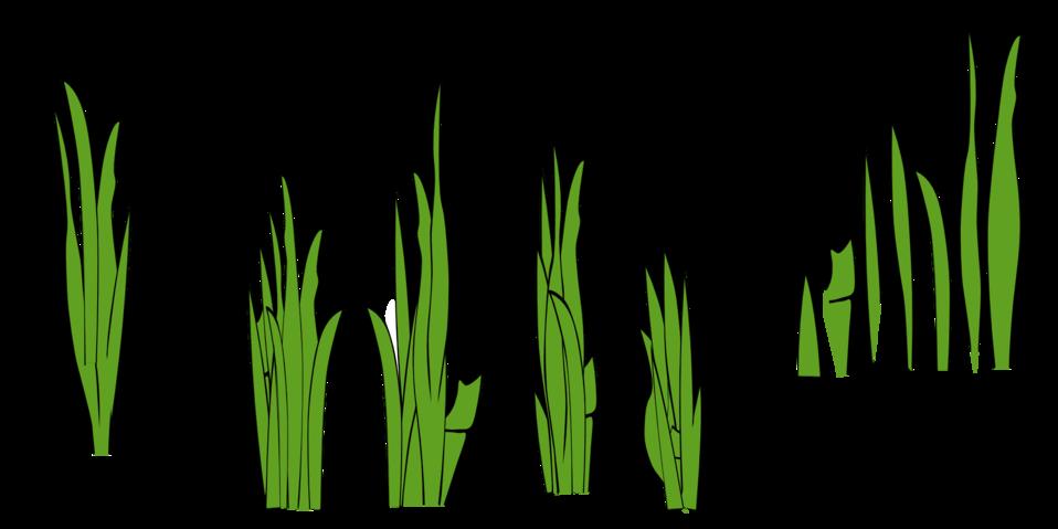 Public domain clip art. Clipart grass template