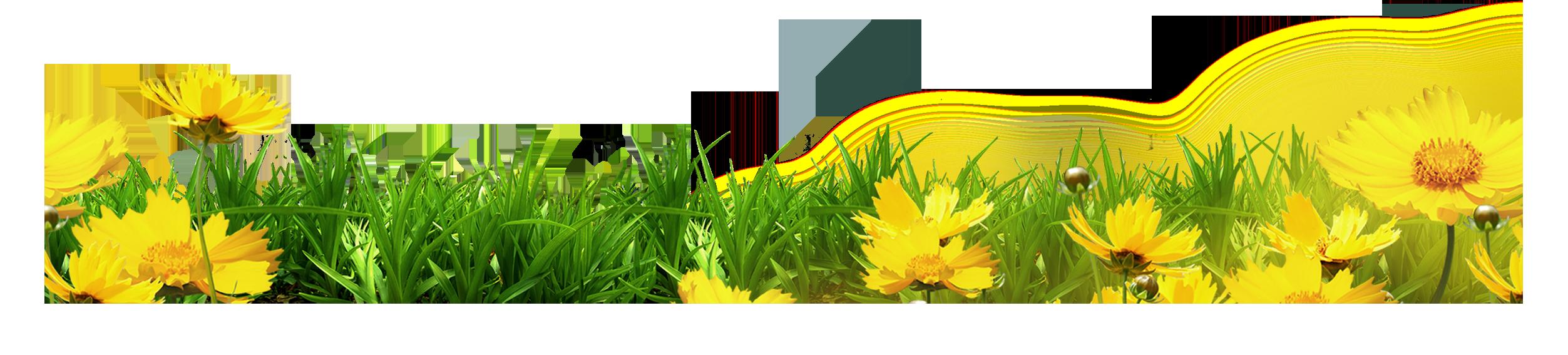 Clipart grass template. Clip art yellow floral